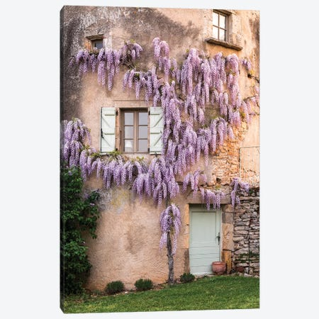 France, La Garrigue. Mas de Garrigue, wisteria growing on a turret of the home.  Canvas Print #HLO52} by Hollice Looney Canvas Wall Art