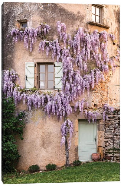 France, La Garrigue. Mas de Garrigue, wisteria growing on a turret of the home.  Canvas Art Print
