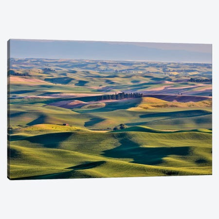 USA, Washington State, Palouse. View from Steptoe Butte. Canvas Print #HLO78} by Hollice Looney Canvas Artwork