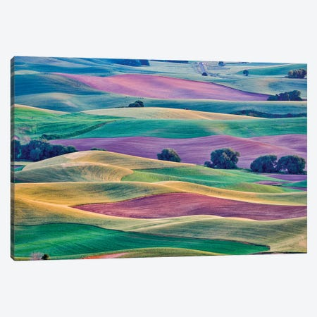 USA, Washington State, Palouse. View from Steptoe Butte. Canvas Print #HLO79} by Hollice Looney Canvas Wall Art
