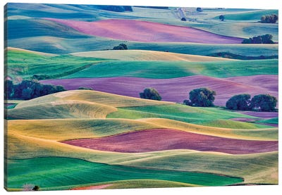 USA, Washington State, Palouse. View from Steptoe Butte. Canvas Art Print
