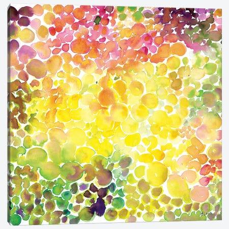 Vineyard Canvas Print #HLU107} by Hodaya Louis Canvas Wall Art