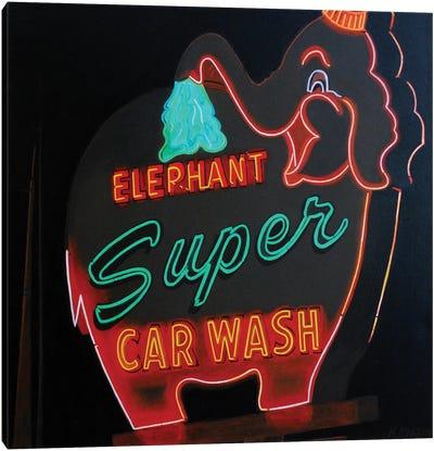 Super Wash Canvas Art Print