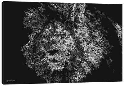 Big 5 Collection - Lion Canvas Art Print