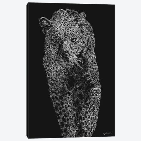 Big 5 Collection - Leopard V2 Canvas Print #HMI102} by Johan Marais Canvas Art