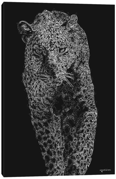 Big 5 Collection - Leopard V2 Canvas Art Print