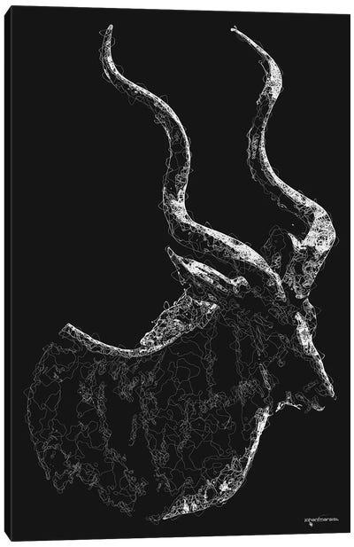 Line Art African Kudu Canvas Art Print