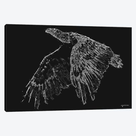 Line Art American Bald Eagle Canvas Print #HMI104} by Johan Marais Canvas Art Print
