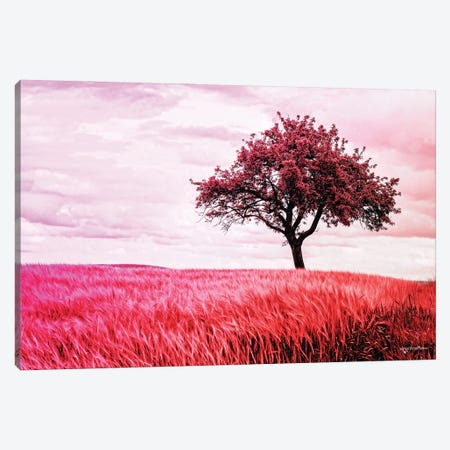 Red Grass Fields Tree Canvas Print #HMI35} by Johan Marais Canvas Wall Art