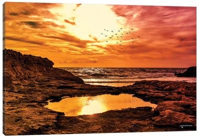 Rocky Coast Line Sunset Canvas Art Print