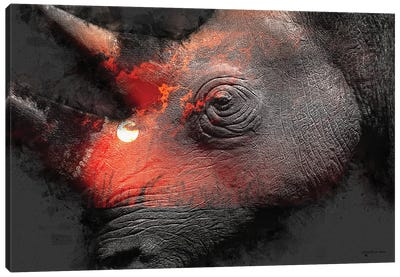 Save The Rhinos Canvas Art Print