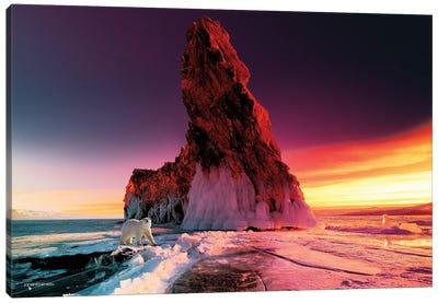 Winter Sunrise Canvas Art Print