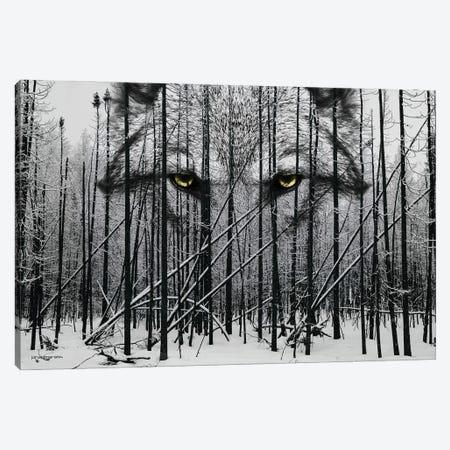 Wolf Winter Woods Canvas Print #HMI91} by Johan Marais Art Print