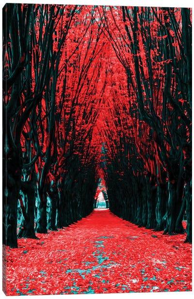 A Walk To Remember Canvas Art Print