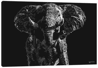 Big 5 Collection - Elephant Canvas Art Print