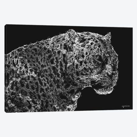 Big 5 Collection - Leopard Canvas Print #HMI99} by Johan Marais Canvas Art Print