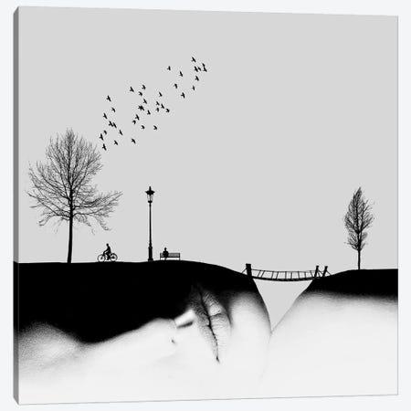 Untitled Canvas Print #HMJ5} by Hadi Malijani Canvas Artwork