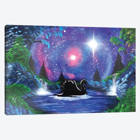 Black Swan In Night Landscape Canvas Print #HMK13} by Nicolay Homenko Canvas Print