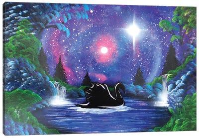 Black Swan In Night Landscape Canvas Art Print