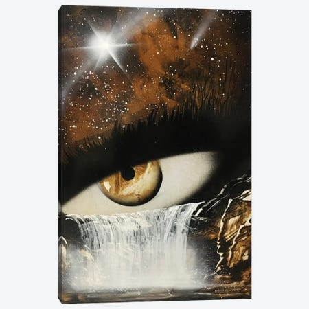 Mystical Eye In Brown Colors Canvas Print #HMK76} by Nicolay Homenko Canvas Art