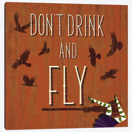 Don't Drink And Fly Canvas Print #HMO2} by 5by5collective Canvas Art