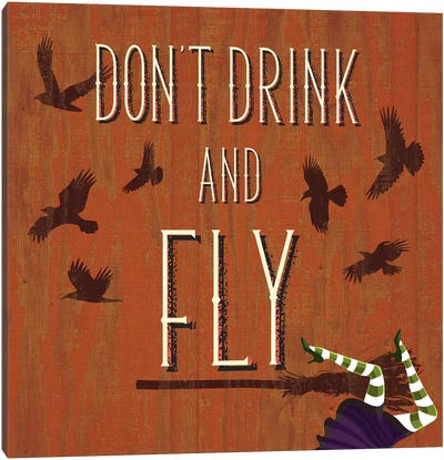 Don't Drink And Fly Canvas Print #HMO2