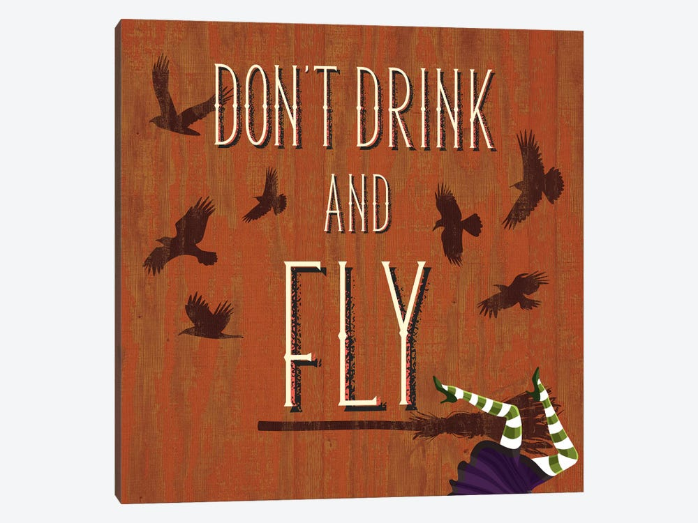 Don't Drink And Fly by 5by5collective 1-piece Canvas Artwork