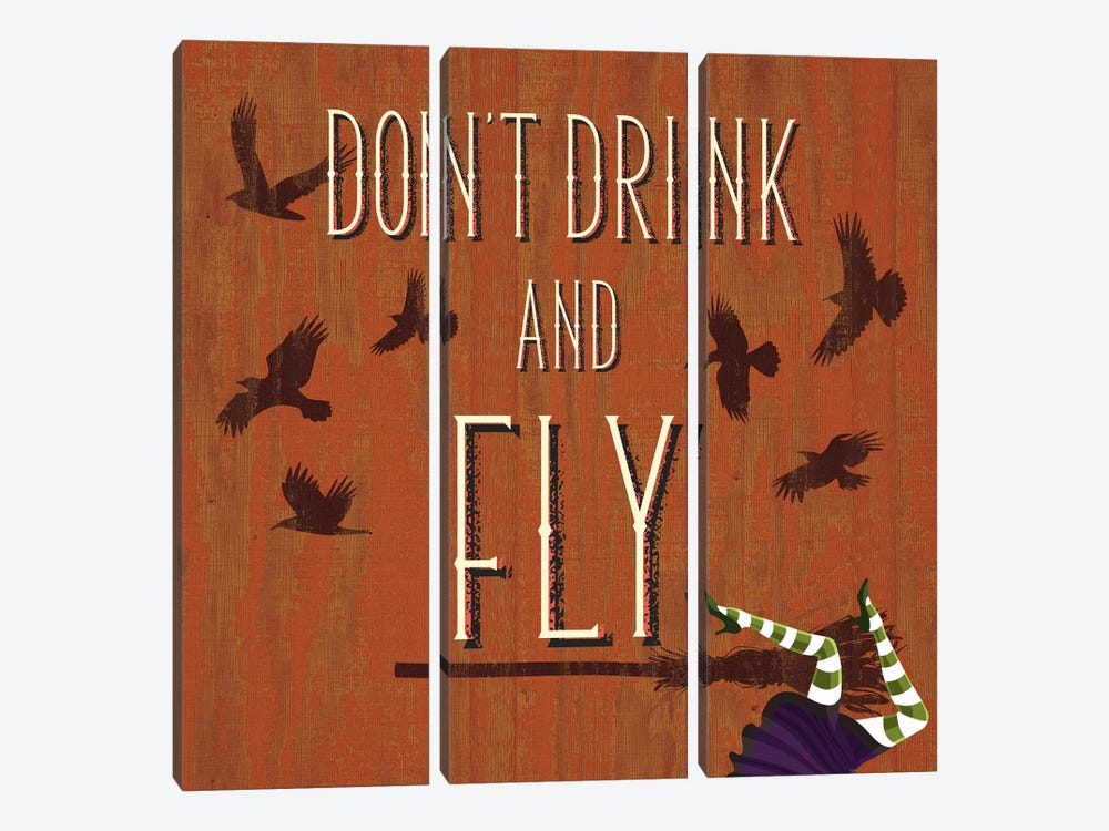 Don't Drink And Fly by 5by5collective 3-piece Canvas Artwork