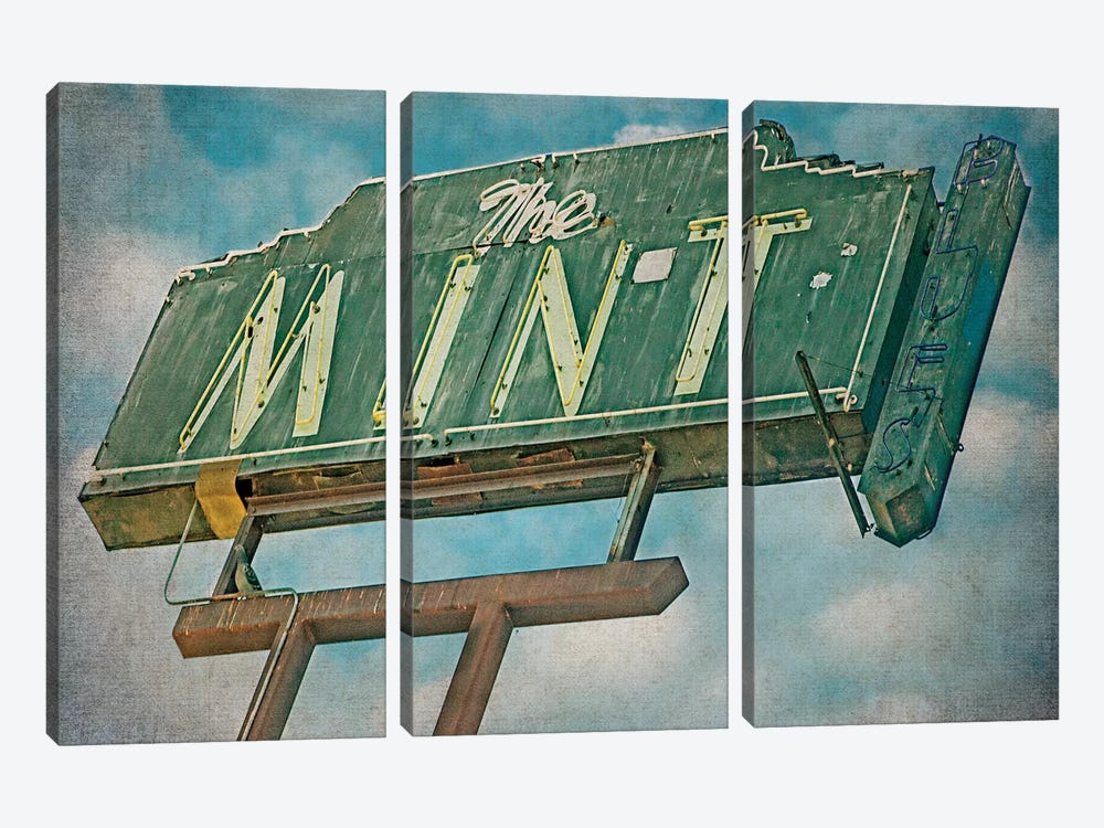 Vintage L.A. VIII by Honey Malek 3-piece Canvas Artwork