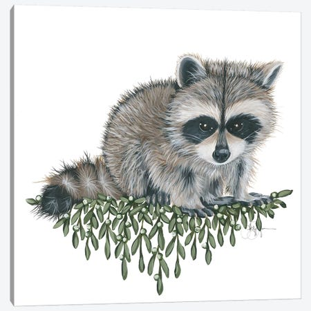 Baby Raccoon Canvas Print #HOA23} by Hollihocks Art Canvas Print