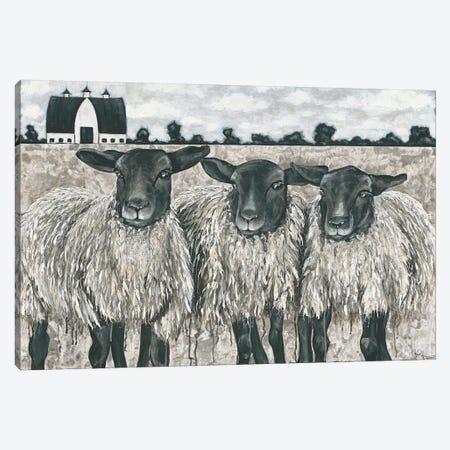 Three Sheep Canvas Print #HOA39} by Hollihocks Art Canvas Artwork