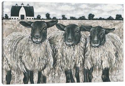 Three Sheep Canvas Art Print