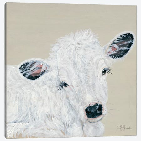 White Calf 3-Piece Canvas #HOA43} by Hollihocks Art Art Print