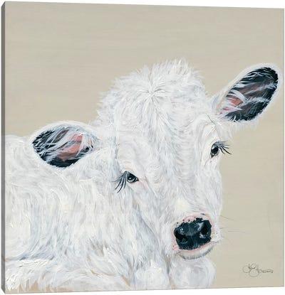 White Calf Canvas Art Print
