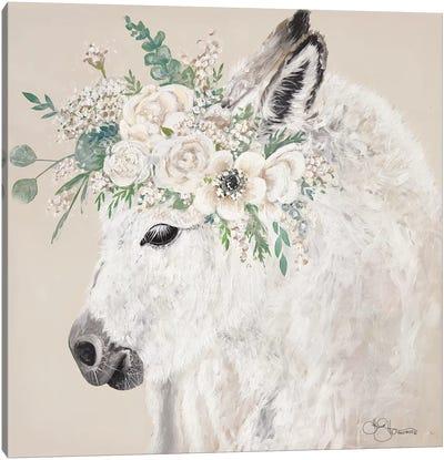 Hope the Donkey Canvas Art Print