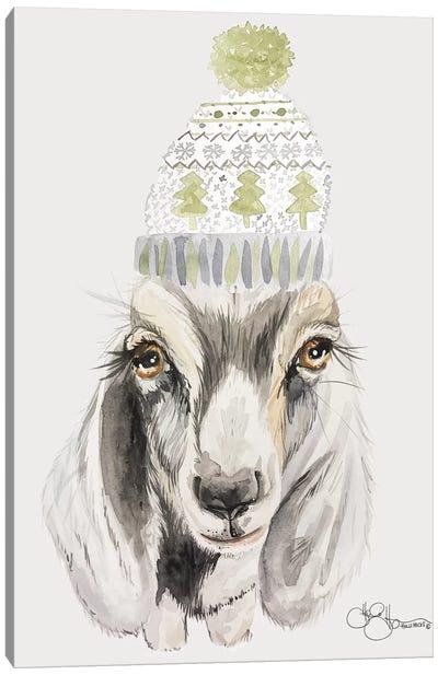 Cozy Goat   Canvas Art Print