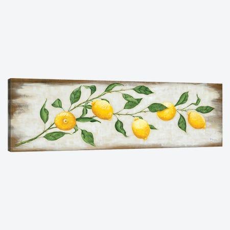 Lemon Branch Canvas Print #HOA72} by Hollihocks Art Canvas Wall Art