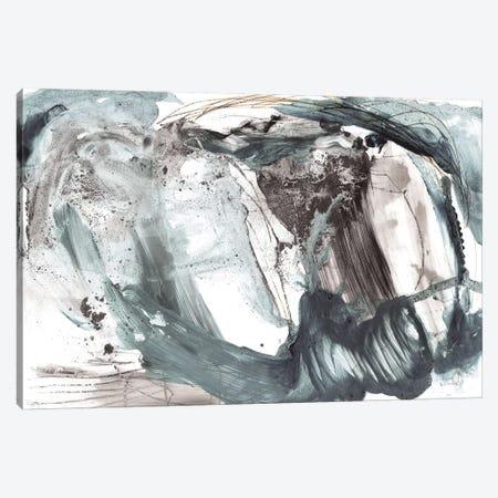 Storm Canvas Print #HOB119} by Dan Hobday Canvas Wall Art