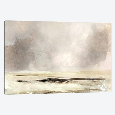 Southwesterly Canvas Print #HOB168} by Dan Hobday Canvas Art Print