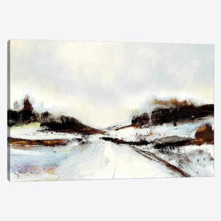 Winter Road Canvas Print #HOB190} by Dan Hobday Canvas Art
