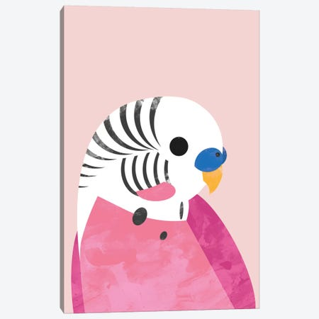 Budgie Canvas Print #HOB20} by Dan Hobday Canvas Art