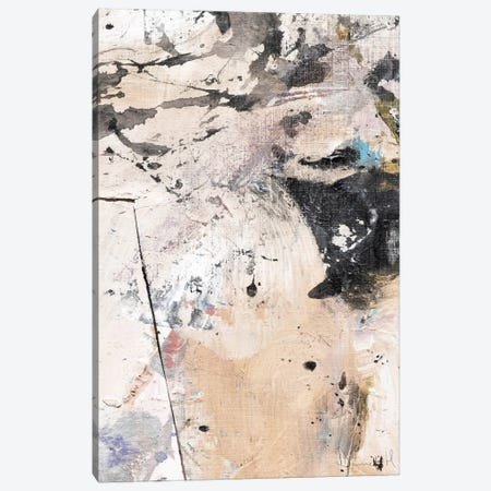 Earth I Canvas Print #HOB33} by Dan Hobday Art Print