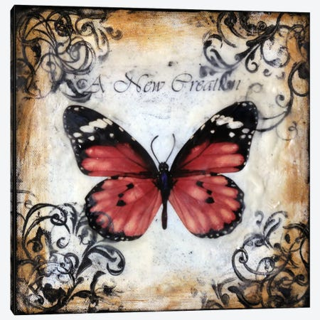 Flutterby 7 Canvas Print #HOD111} by Heather Offord Canvas Artwork