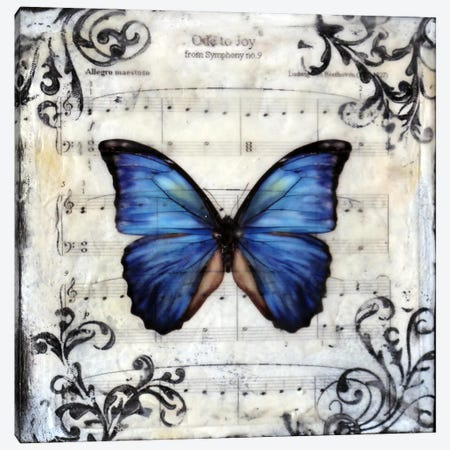 Flutterby 8 Canvas Print #HOD112} by Heather Offord Canvas Art