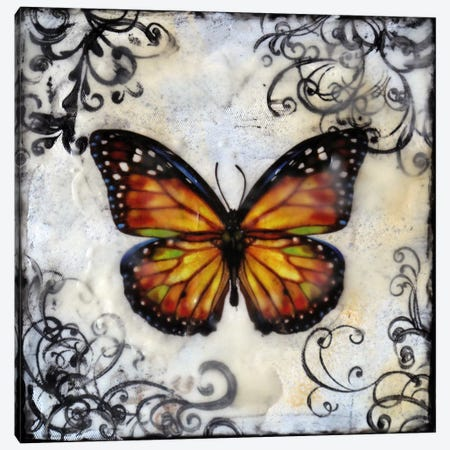 Flutterby 12 Canvas Print #HOD114} by Heather Offord Art Print