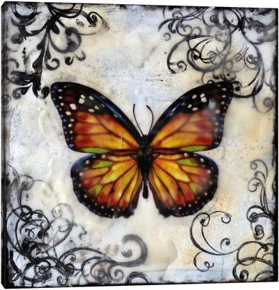 Flutterby 12 Canvas Print #HOD114