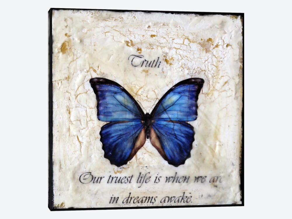 Flutterby 13 by Heather Offord 1-piece Canvas Wall Art