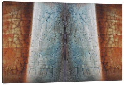 Heaven And Earth Canvas Art Print