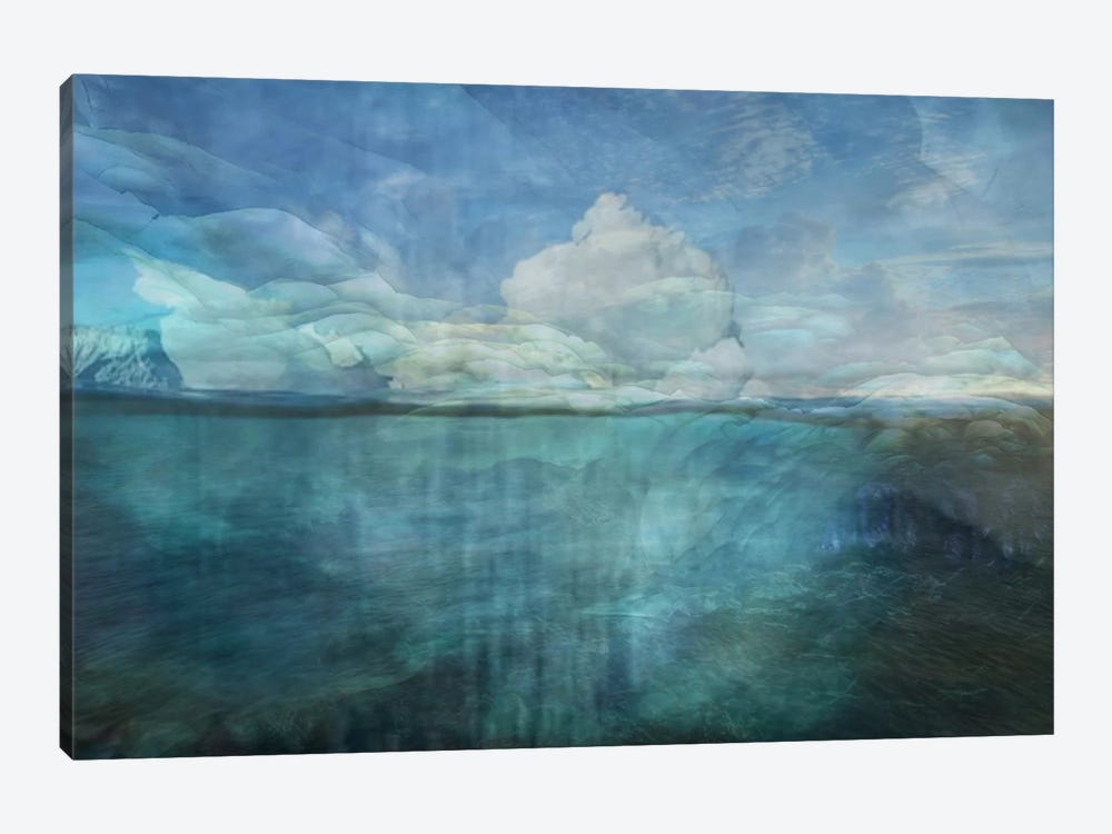 In Dreams by Heather Offord 1-piece Canvas Art