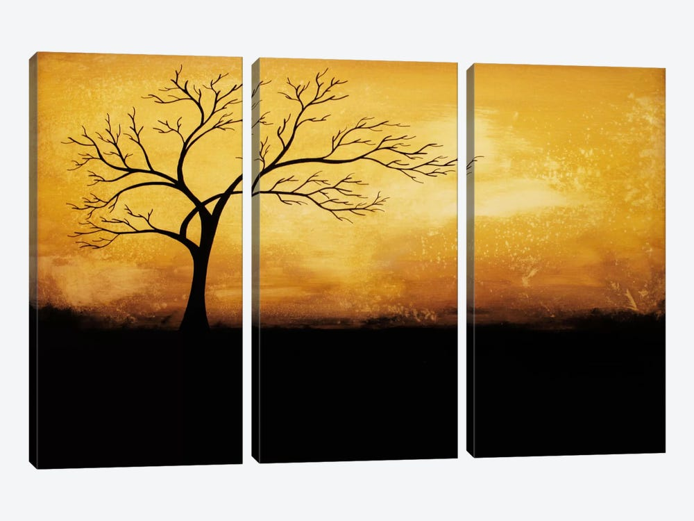 Morning Glory by Heather Offord 3-piece Canvas Artwork